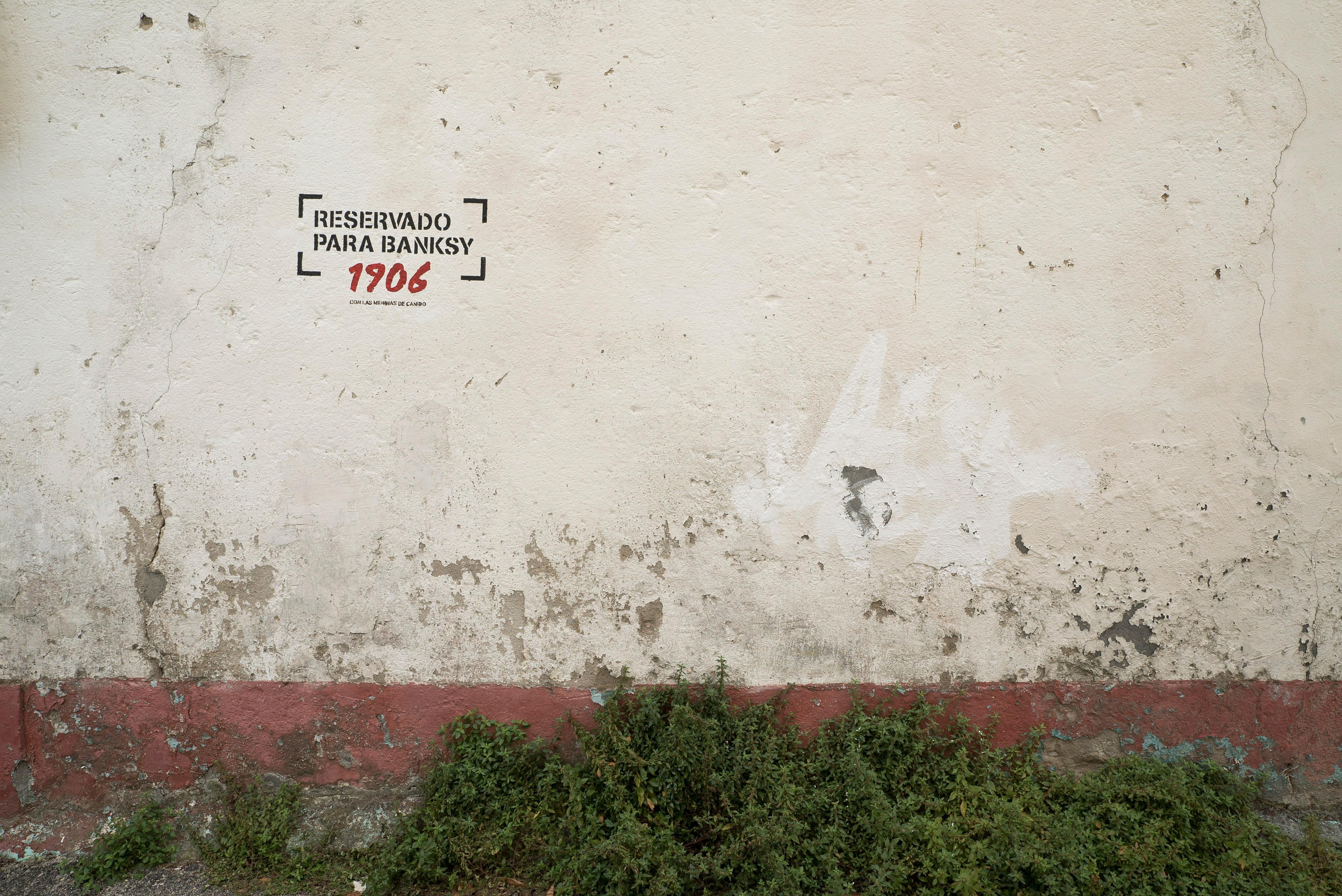 Campaña de 1906 para localizar a Banksy para Las Meninas de Canido